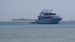 """Сафари на """"Ocean Dream"""" с 30 апреля по 7 мая 2011 года."""
