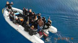 """Сафари по северу Красного моря на ""Ocean Dream"" 12-19.05.2012"