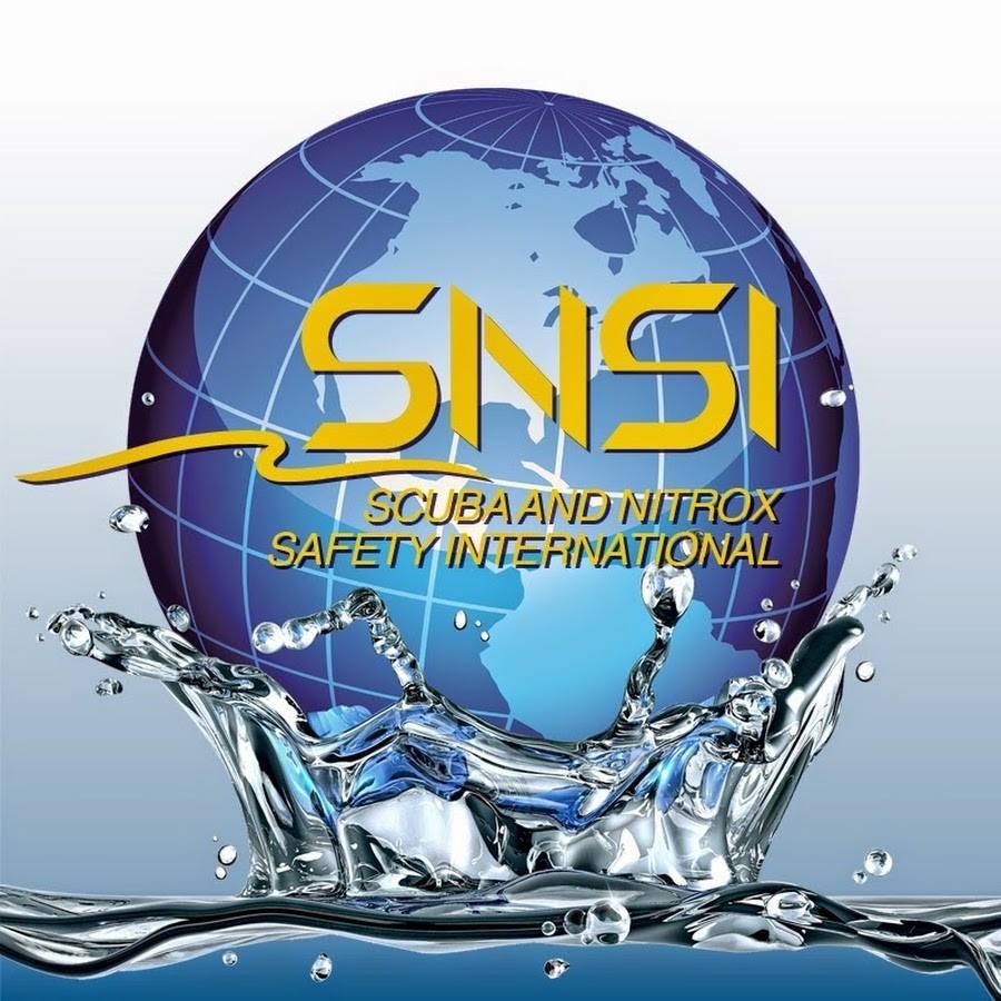 Обучающее агентство SNSI