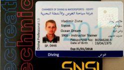 Рабочая виза и ID снова получены )